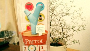 Ausgepackt - Flower Power von Parrot